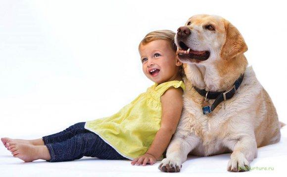 Какую породу собак выбрать для