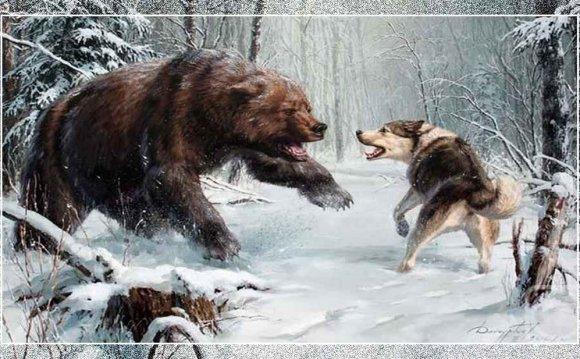 охотничьи и ездовые собаки
